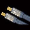 Shunyata Venom USB cable