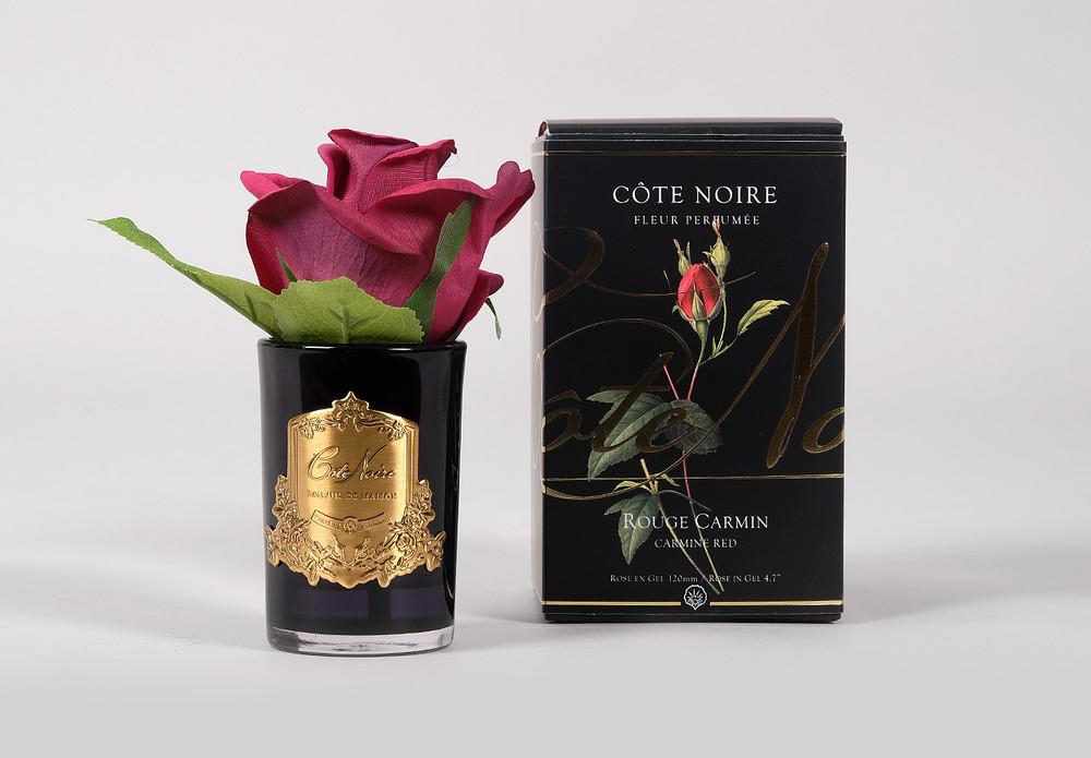 Cote Noire Single Perfumed Rose