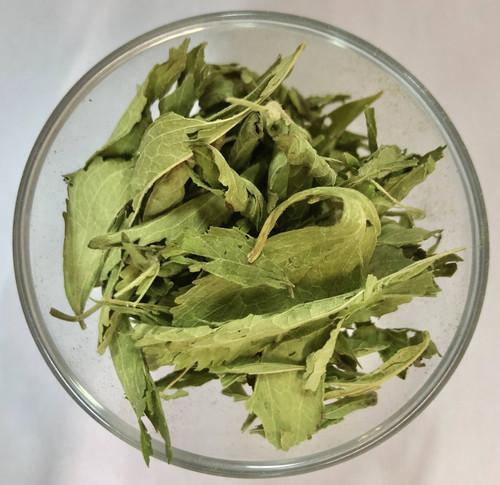 Stevia - spansk