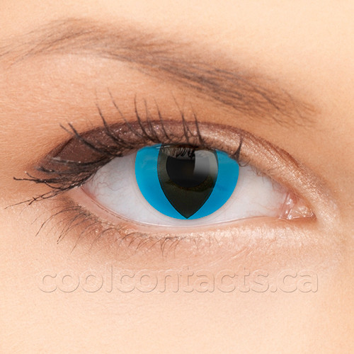 Colored Contacts Cat Eye Makeup Good Service 7baed 15e89