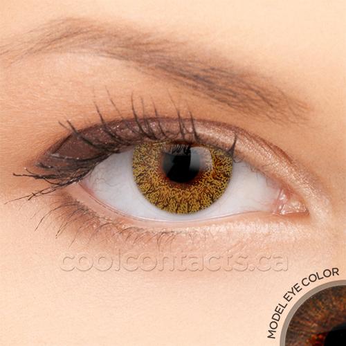 colors-7031-brown.jpg