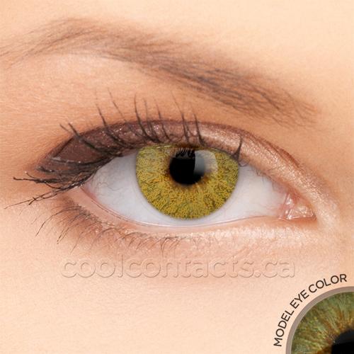 colors-7034-green.jpg