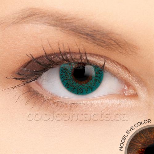 colors-7044-brown.jpg