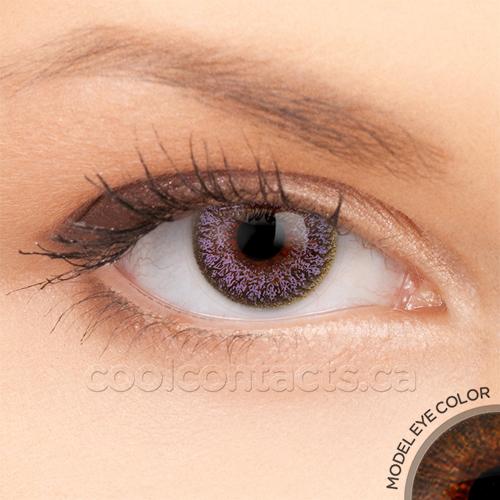 colors-7065-brown.jpg