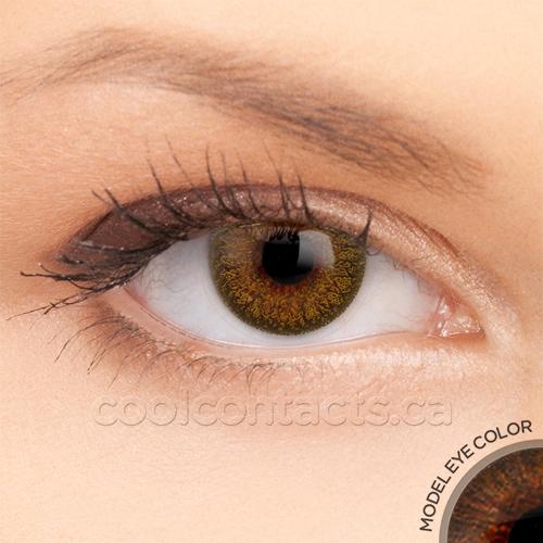 colors-7075-brown.jpg