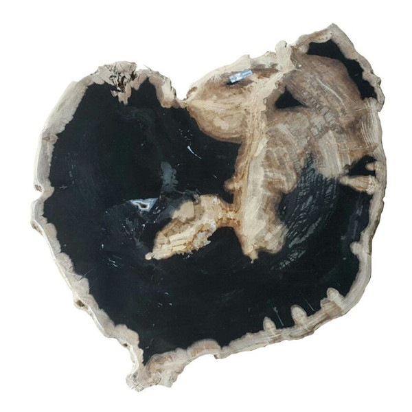 Petrified Wood - Table Top Raw - PT-RAW-502