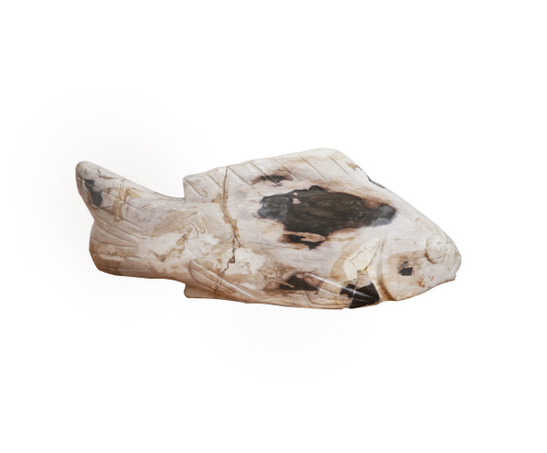 Petrified Wood - Fish White - PT-FIS-002