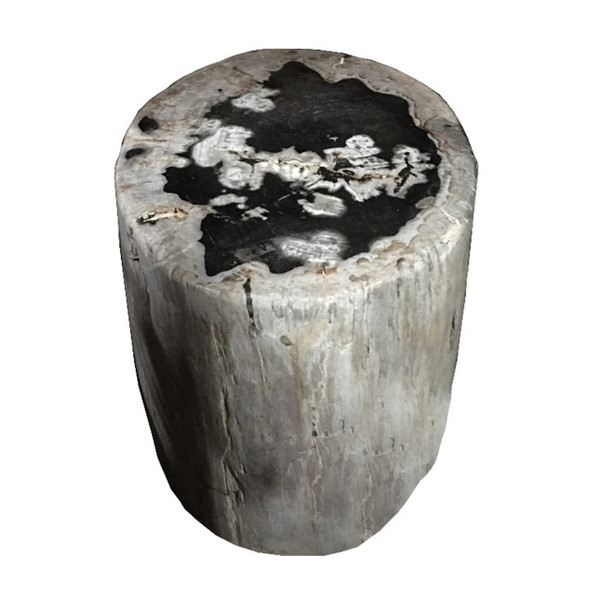 Petrified Wood - Stool - PT-STO-009