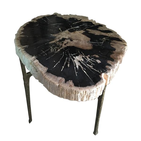 Petrified Wood - Table Top Raw - PT-RAW-003