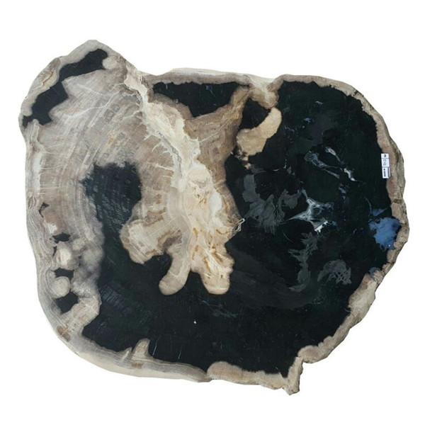 Petrified Wood - Table Top Raw - PT-RAW-503