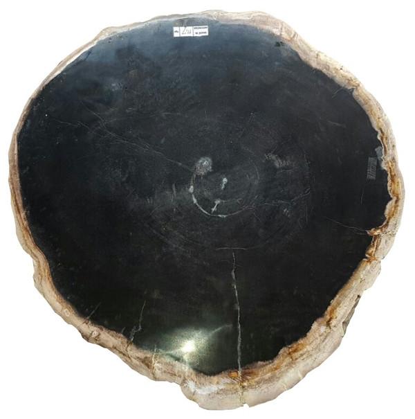 Petrified Wood - Table Top Raw - PT-RAW-507