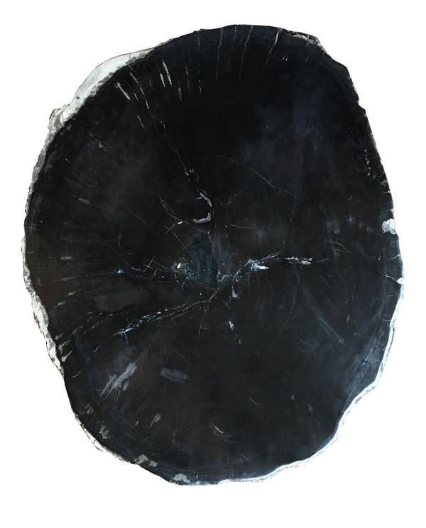 Petrified Wood - Natural Table Top - PT-RAW-174