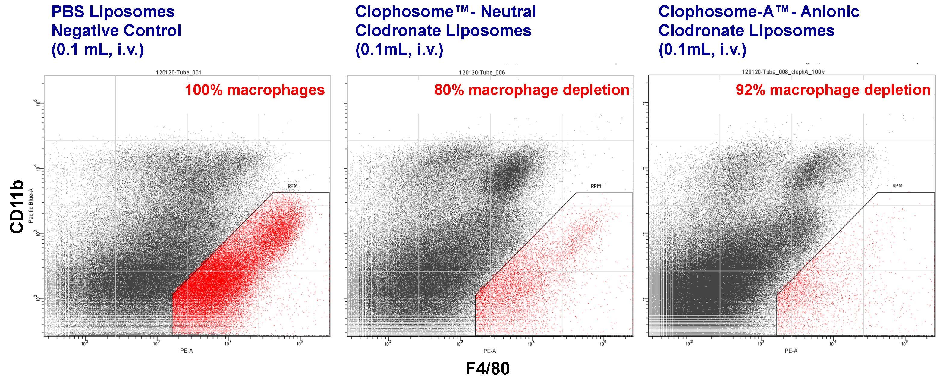 clophosome-flow-cyto-i.v..jpg