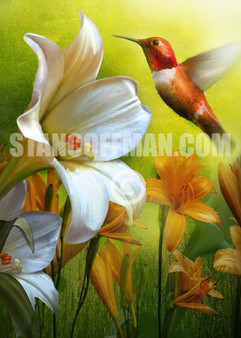 Humming Bird and White Lily with Yellow Flowers (Digital Download)