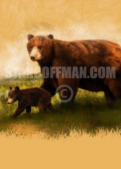 Mother Bear and Cub Walking in Grass (Digital Download)