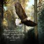 "Isaiah 40:31 ""Soar on Wings like Eagles"" Keepsake Box"