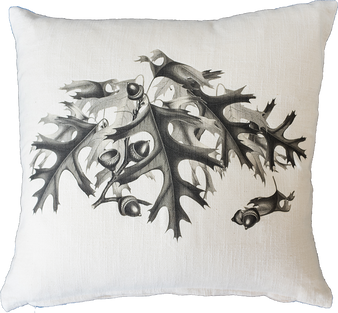 Black & White Oak Leaves