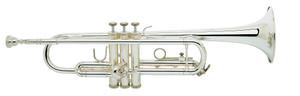 Bach TR300H2S trumpet silver