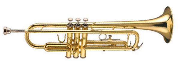 Bach TR300H2 trumpet lacquer