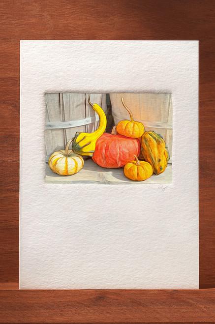 Pumpkin77 FL22-NC