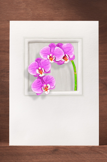 Orchid15 OR15-NC