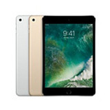 iPad mini 4 Cases