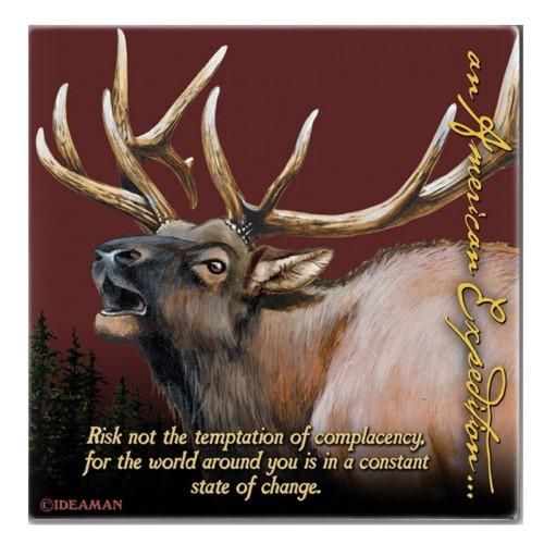 American Expedition Square Coaster - Elk