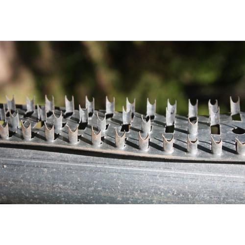 Boss Buck Shark Teeth 3 Pc Set 36 inch Strips