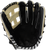 Marucci Ascension AS125Y Baseball Glove 12.5 H Web Right Hand Throw