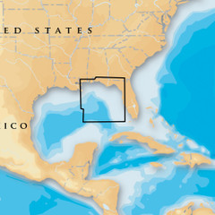 Navionics Platinum+ - East Gulf of Mexico - microSD\/SD [MSD\/630P+]