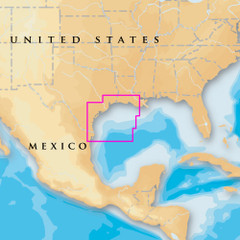 Navionics Platinum+ - West Gulf of Mexico - microSD\/SD [MSD\/635P+]