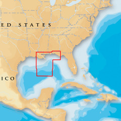 Navionics Platinum+ - Gulf of Mexico Central - microSD\/SD [MSD\/651P+]