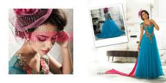 Elegant Designer Net Gown3