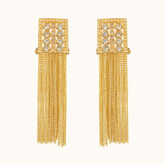 Stunning Gold Plated Earrings1869