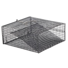 "Frabill Crawfish Flat Bottom Square Trap - 12"" x 12"" x 5"" [1262]"