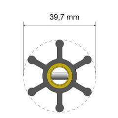 Albin Pump Premium Impeller Kit - 39.7 x 9.5 x 19.2mm - 6 Blade [06-01-003]