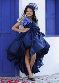 Blue color Taffeta Fabric Gown