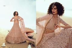 Powder Beige color Soft Net Fabric Lehenga Choli