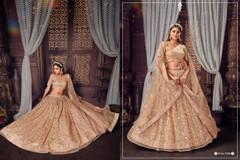 Beige color Soft Net Fabric Lehenga Choli