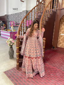 Pink color Net Fabric Full Sleeves Floor Length Chanderi Fabric Gown