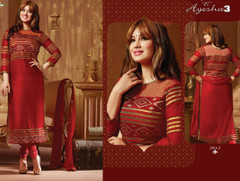 Gorgeous Indian Dress158