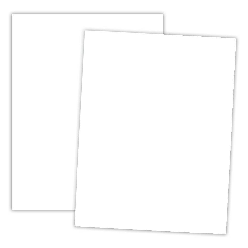 Sample and Sheet.