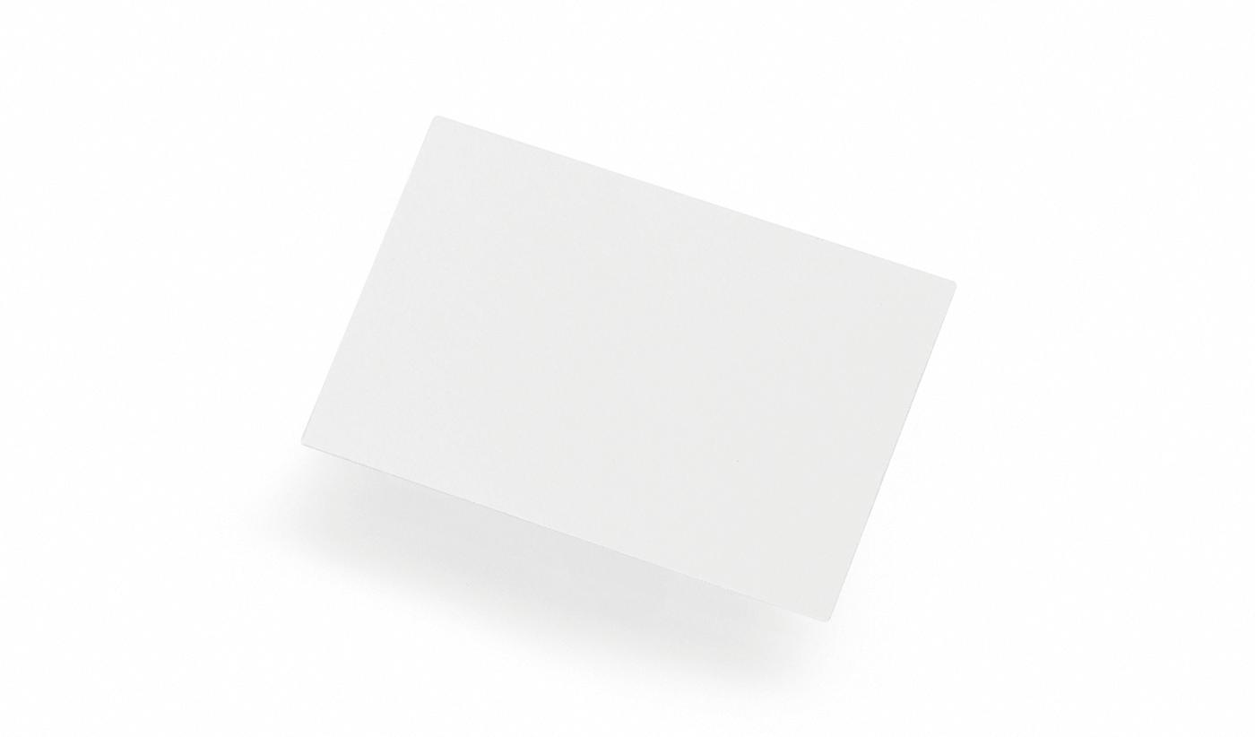 Blanks/USA Printable Business Cards