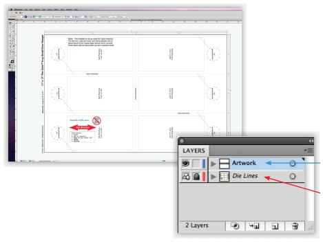 Adobe Illustrator Example
