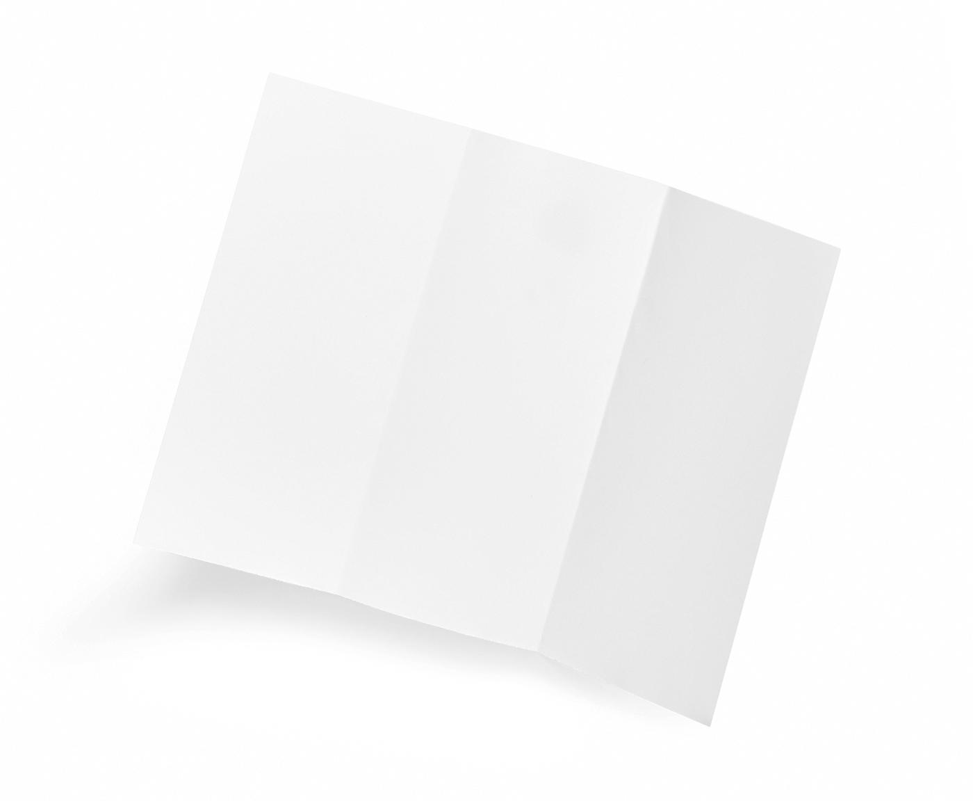 Blanks/USA Tri-Fold Brochure