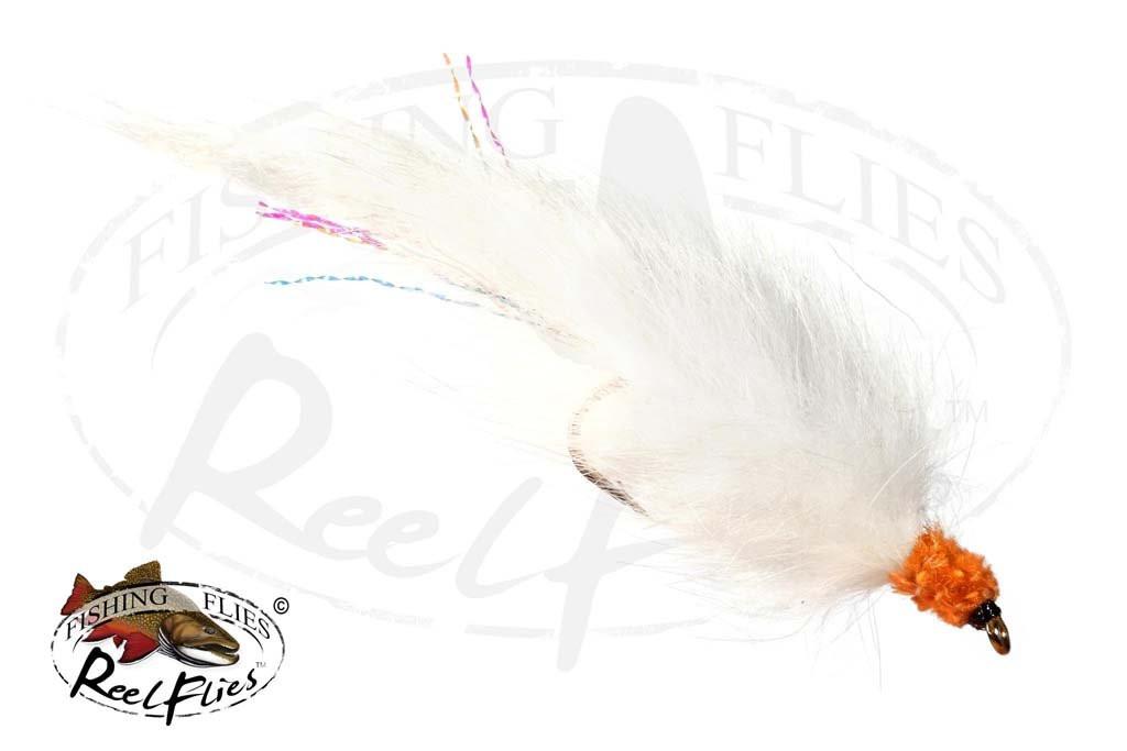 Flesh Fly Orange Head White