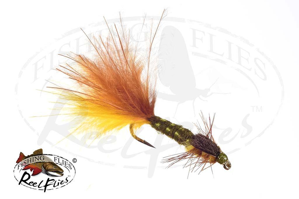 Multi Coloured Damsel Fly