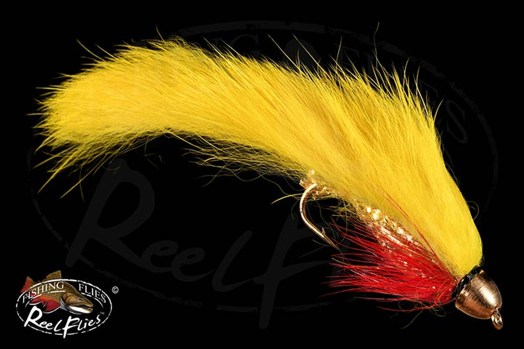 CH Beerbelly Yellow Zonker