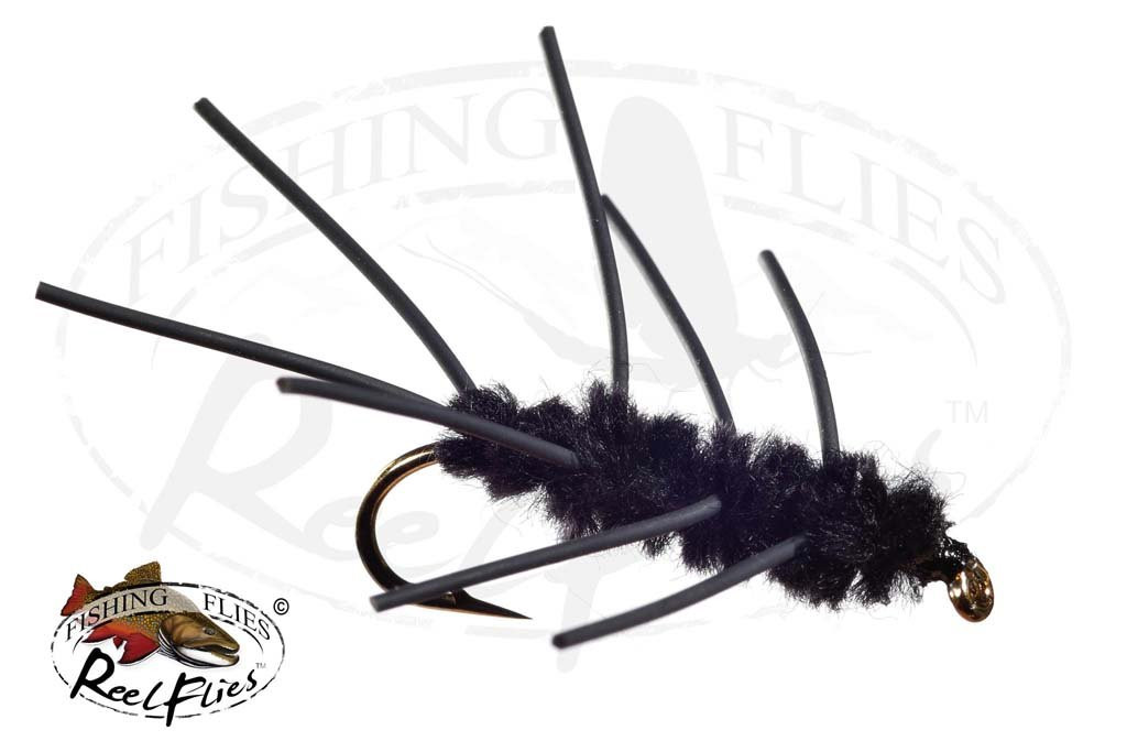 Black-Girdle-Bug