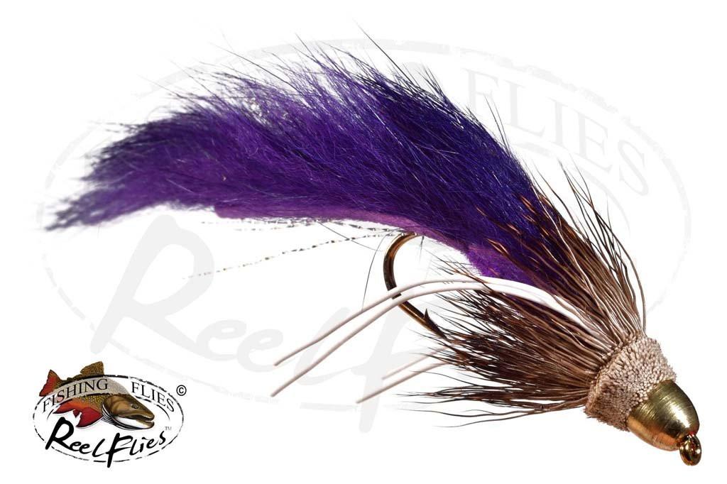 CH Zuddler Purple
